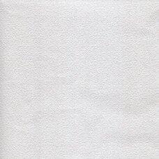 Dažomi tapetai  416-01